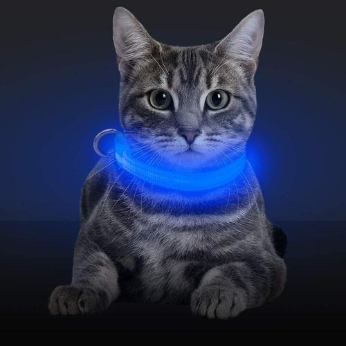 Collar Led Mascota Perro Gato Paseo Seguridad Talle S   S124