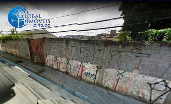 Locação Terreno São Paulo Brasilândia - L203