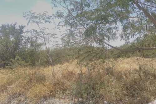 Terrenos En Renta En Zacatecas, Pesquería