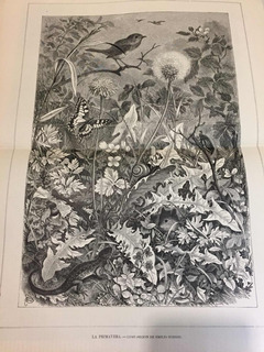 Grabado Antiguo La Primavera Grabado El Mundo Ilustrado