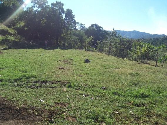 Finca De 463 Tareas Con Vocación Ganadera Y Agrícola En Ocoa