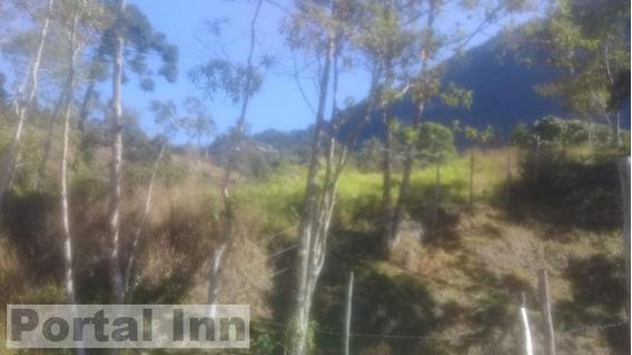 Sítio Para Venda Em Teresópolis, Santa Rita, 2 Dormitórios, 1 Banheiro, 2 Vagas - 2004