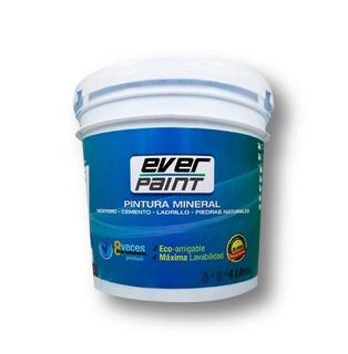 Pintura Repelente Al Agua Para Piedra Ext 4l Everpaint