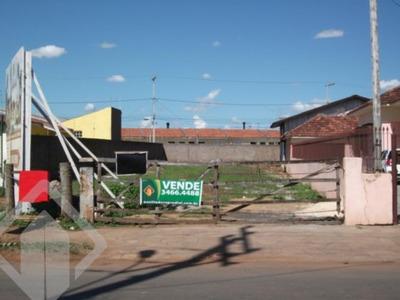 Terreno - Mato Grande - Ref: 51385 - V-51385