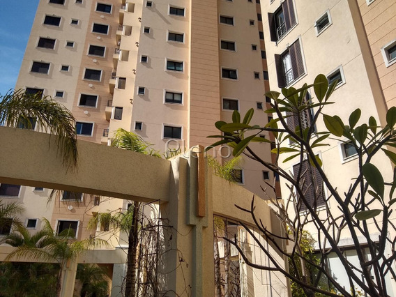 Apartamento Á Venda E Para Aluguel Em Cambuí - Ap024379