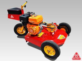 Minitractor Corta Cesped Roland H001 (moto Tractorcito)
