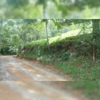 Terreno Em Juquitiba Rodovia Regis Bittencourt, Km-320