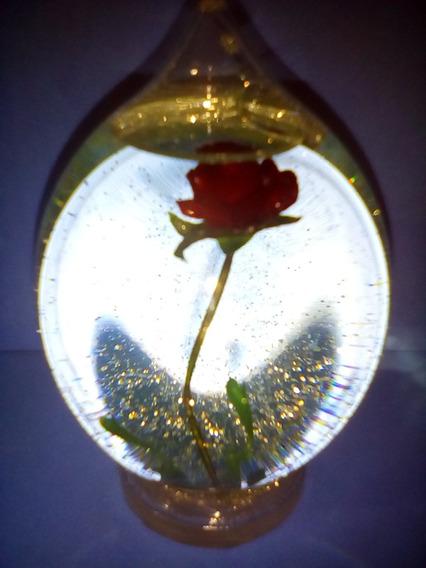 La Bella Y La Bestia, La Rosa En Su Cupula