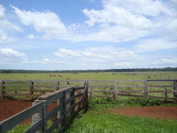 Fazenda Rural À Venda, Zona Rural, Marcelândia - Fa0184. - Fa0184