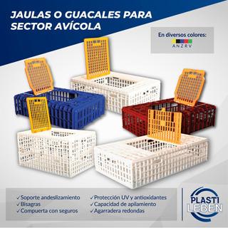 Jaulas Guacales Plástico Transporte De Pollos Pavos Gallinas