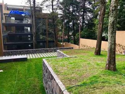 Venta Departamentos Vista Hermosa Con Jardin / Terrazas