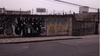 Terreno À Venda/aluguel, São Bernardo Do Campo/sp - 7717