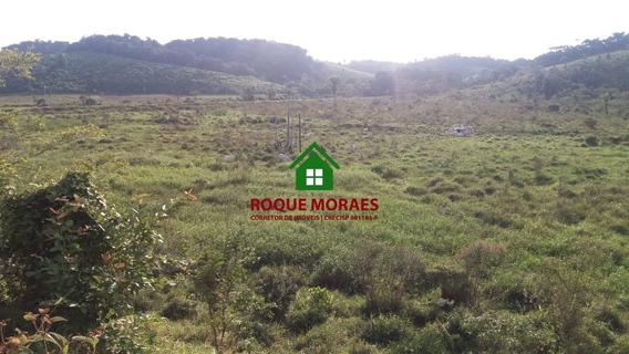 Fazendinha- Iguape/miracatu-pasto, Palmito E Galpão.ref:0049