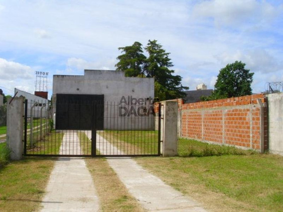 Deposito En Alquiler En 530/132 Y 133 La Plata - Alberto Dacal Propiedades