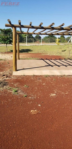 Chácaras_sítios_fazendas Para Venda - 13650.6189