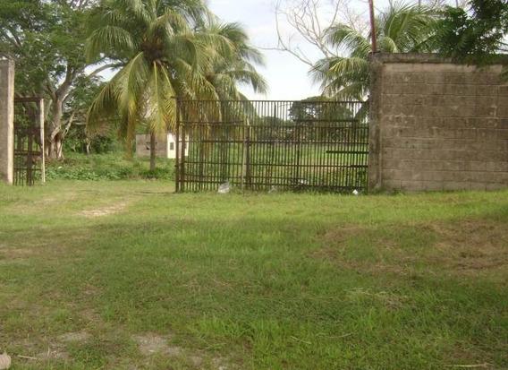 Terreno En Venta San Felipe Yaracuy 16-17709 J&m 0424593452