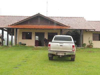 Fazenda Para Venda Em Anapu, Fazenda Bacajá - 692