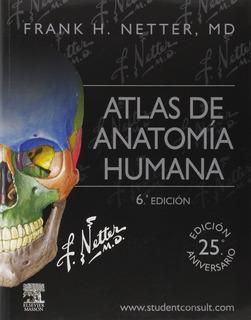 Atlas De Anatomía Humana De Netter 6ta Edición