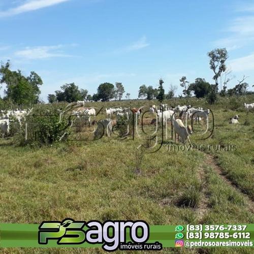 Imagem 1 de 10 de Fazenda À Venda, 310000 M² Por R$ 62.000.000,00 - Centro - Poconé/mt - Fa0226