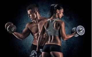 Adesivo Academia Fitness Pilates Musculação 2,05m X 1,95m