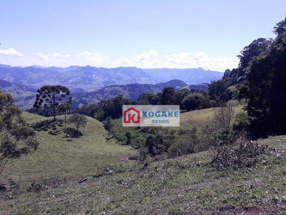 Terreno À Venda, 24000 M² Por R$ 300.000 - Atras Da Pedra - Gonçalves/mg - Te0998