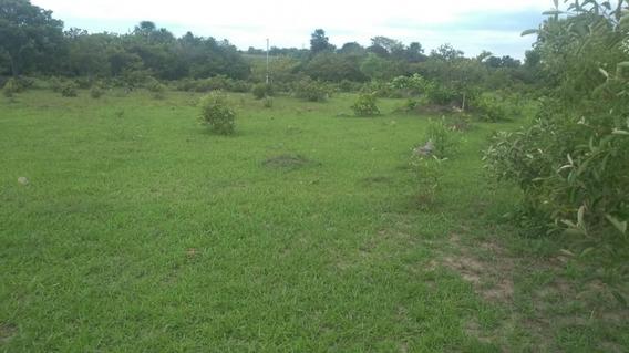 Sitio A Venda Excelente Para Para Pecuária Em Formoso Do Araguaia- To - 1229