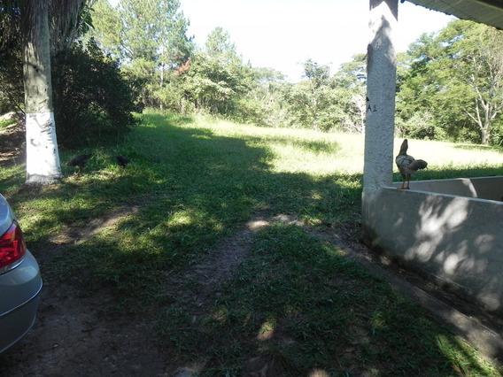 500m² Direto Do Asfalto No Bairro Penhinha