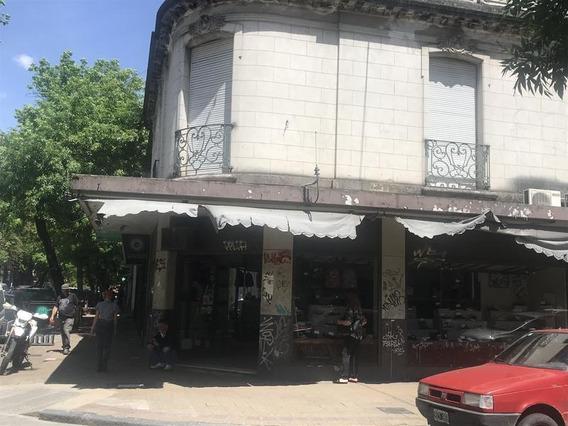 Local - La Plata