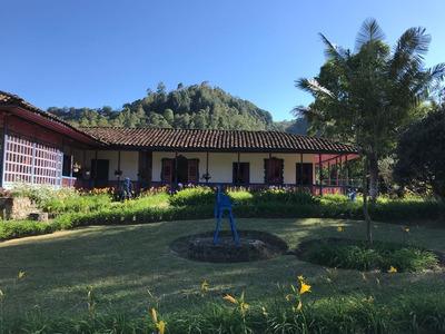 Venta Finca En Salento, Quindio