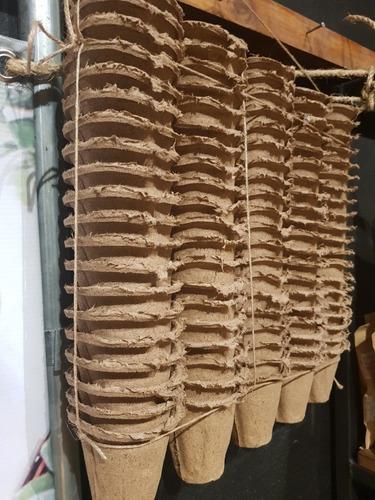50 Macetas Biodegradables Cónica Chica 6 X 6 Cm Ecológica