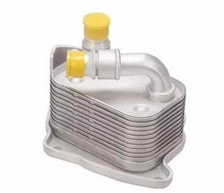Radiador Resfriador Oleo Motor Bmw 11427508967