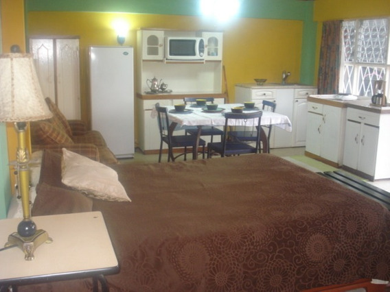 Alquilo Apartamento Amueblado Tipo Estudio San Jose-escazu