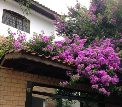 Imagem 1 de 8 de Sobrado À Venda, 3 Quartos, 1 Suíte, 4 Vagas, Rina - Santo André/sp - 48053