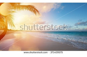 Aprenda Como Baixar Qq Imagem Shutterstock S/ Marca Dagua