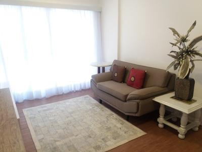 1 Dormitório Mobiliado, Prédio Novo Com Lazer Santos