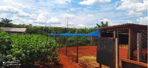 Imagem 1 de 12 de Chácara Com 3 Dormitórios À Venda, 2400 M² Por R$ 320.000,00 - Alto Da Boa Vista - Foz Do Iguaçu/pr - Ch0028