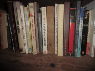 Libros De Todo Tipo Novelas, Cuentos, Poesias. Elija El Suyo