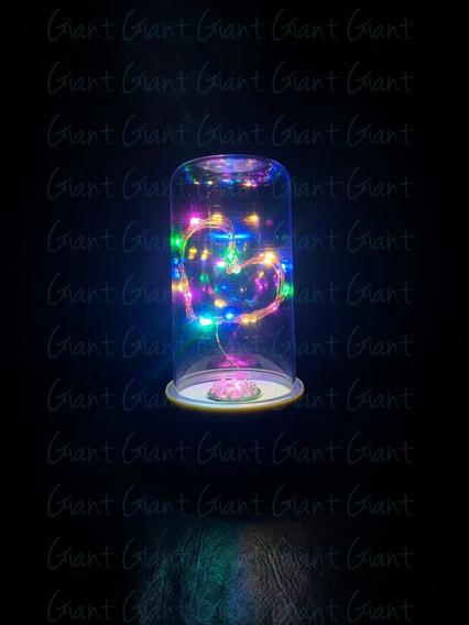 5 Cúpula Encantada Redoma Luminária Led Coração Pilha Color