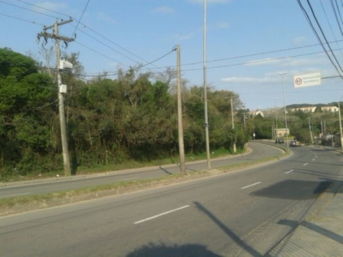 Terreno - Lomba Do Pinheiro - Ref: 368338 - V-pj2542