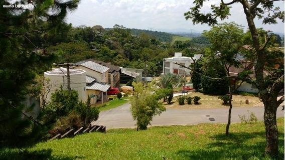 Terreno Para Venda Em Mogi Das Cruzes, Parque Residencial Itapeti - 1777_2-821317