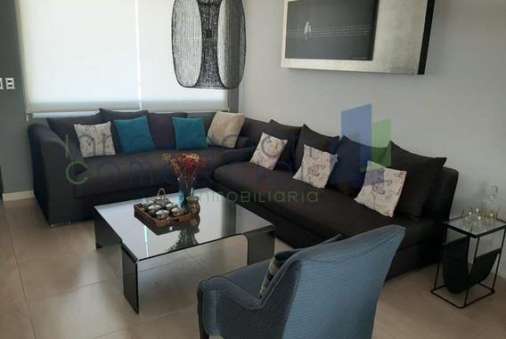 Juriquilla Condesa, Casa En Renta Con Roof Garden