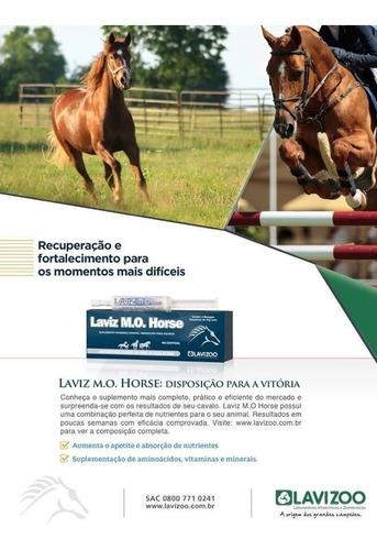 Suplemento Laviz Mo Horse Caja Con 2 Jeringas De 40 Grs.