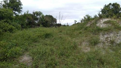 Terreno No Jardim Marambá, Em Itanhaém, Ref. C0549 L C