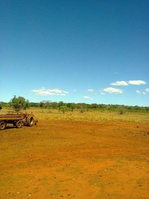 Fazenda Em Barra Do Ouro - To, 2.500 Hectares - 371
