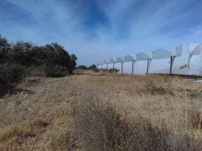 Terreno Agrícola Ideal Para Invernaderos Apaseo El Grande Gto (sss)
