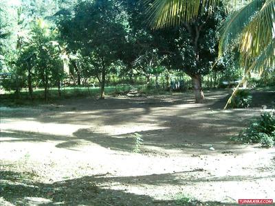 Terreno Con Casa En Villa De Cura