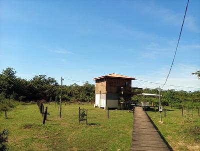 Pesqueiro No Pantanal