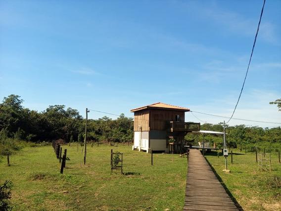 Pesqueiro No Pantanal, Pego Carro