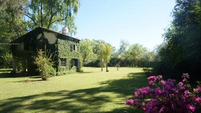 Alquilo Casa Frente A Río - Cabaña - Isla - Delta Del Tigre