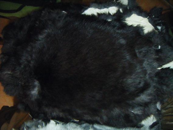 Piel Negra De Conejo Curtida Envío Gratis